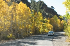 Fall-Colors-Bishop-10-08-04